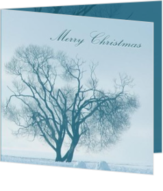 Klassieke kerstkaarten maken en versturen - kerstkaart blue tree on snow white background, vk